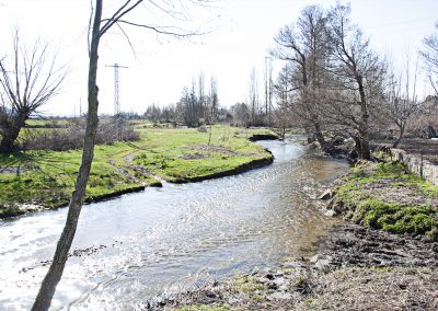 Río Corneja