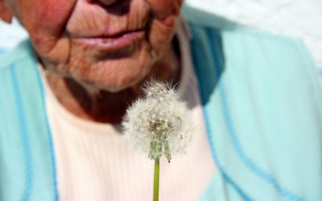 abuelos-bonilladelasierra-avila-españa