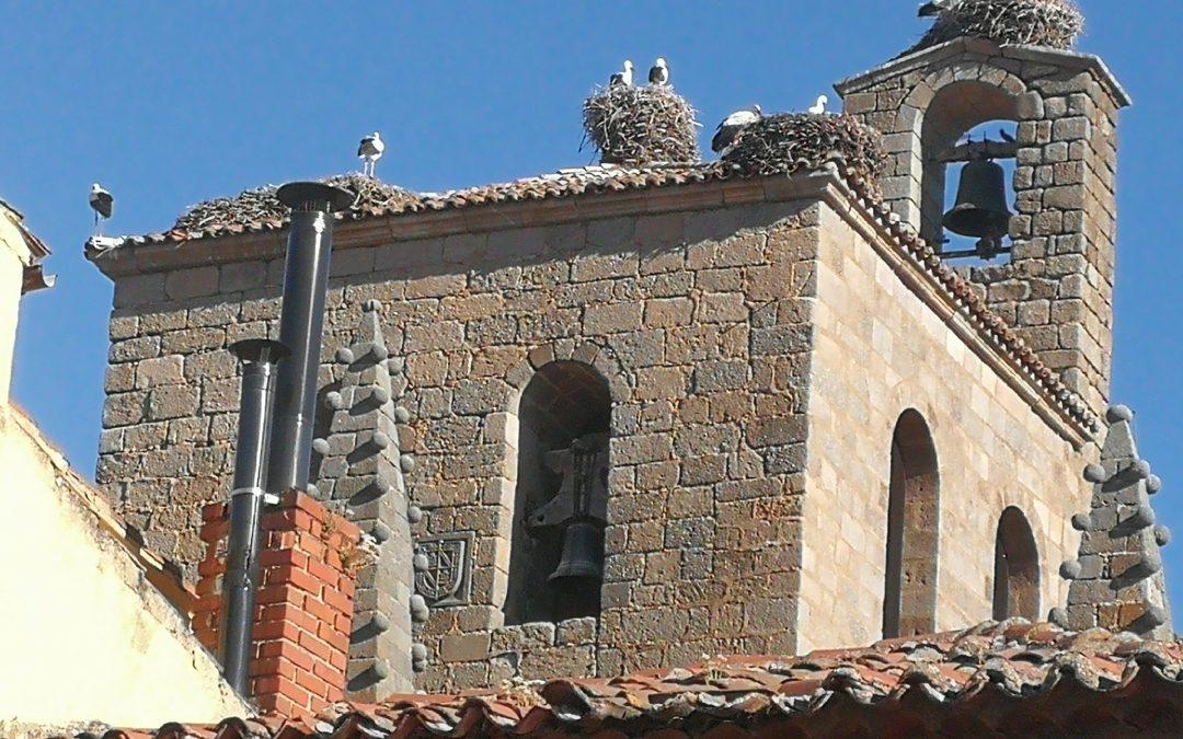 cigüeñas-bonilla de la sierra-avila-España