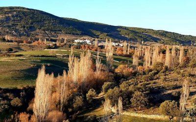 Cabezas de Bonilla: proyectos