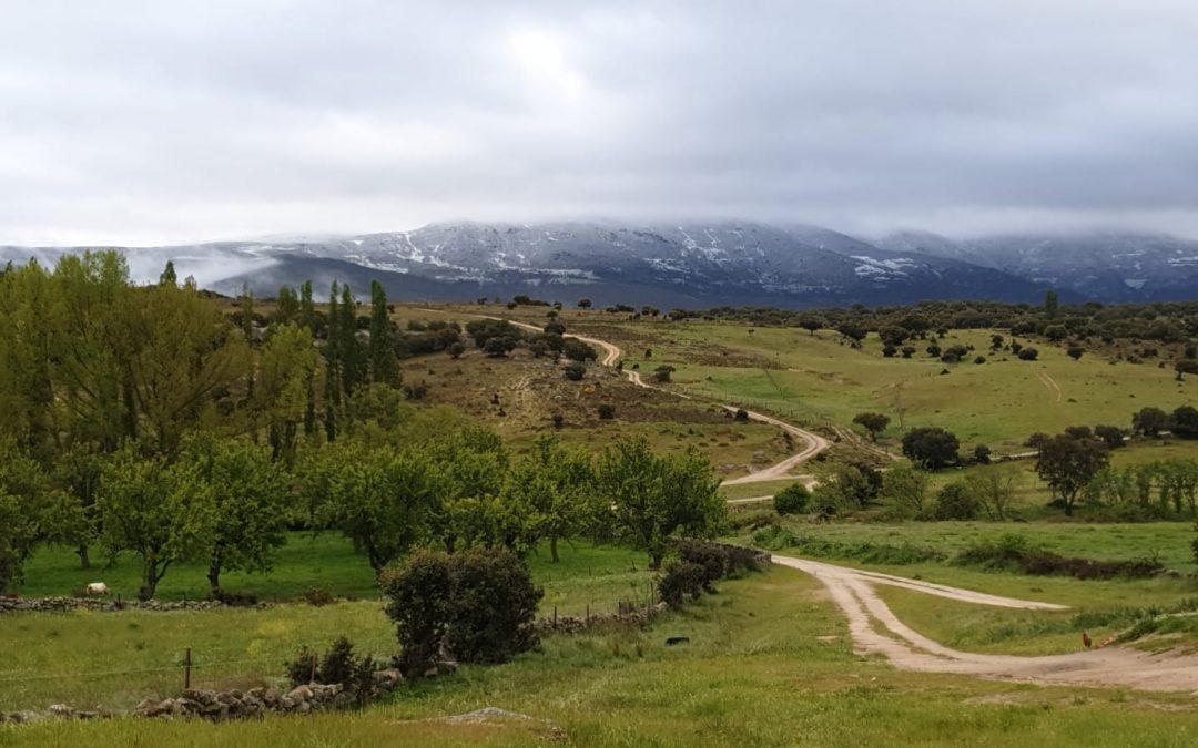Nuevo blog en la web de Bonilla